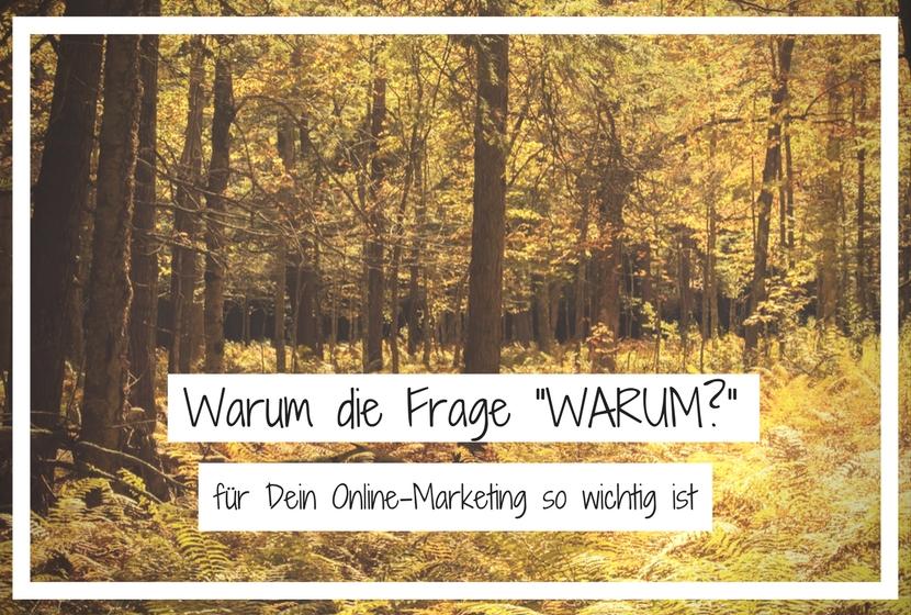 """Warum Die Frage """"Warum?"""" für Dein Online-Marketing so wichtig ist"""