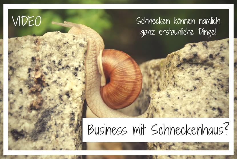 Schneckenhaus-Business